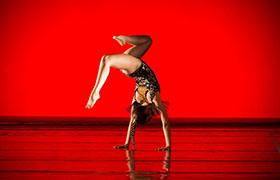 STUDIO DANSE FLEXION - Ecole de Danse à Reims - Sandrine ROBERRINI - Technique Performance